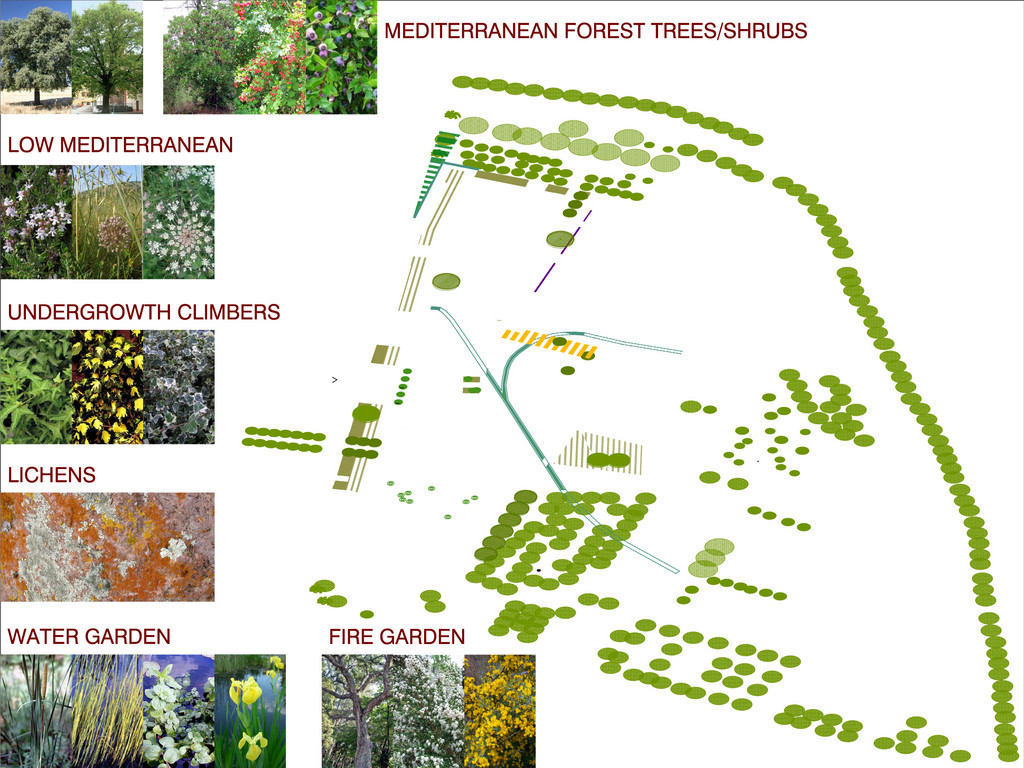 Vegetation: local ecosystems