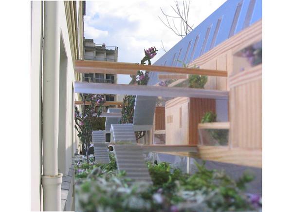 un immeuble en bois massif, entouré de végétation