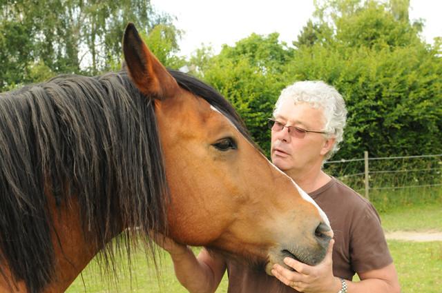 Grelot et son cavalier Rémy
