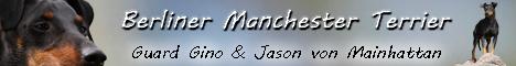 Isabell und ihre Manchester Terrier Gino & Jason (sie macht übrigens geniale Fotos)