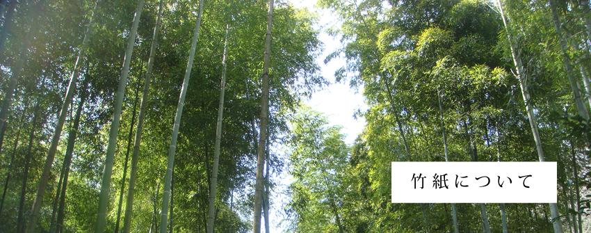 枚方・穂谷の里山の竹で作った竹紙について