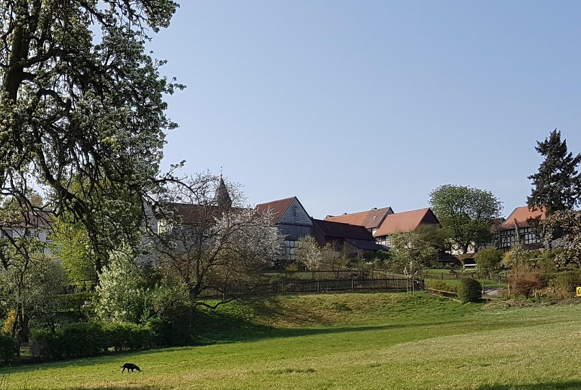 Kirche Beltershausen I Bildquelle: Dr. Klaus Widdra