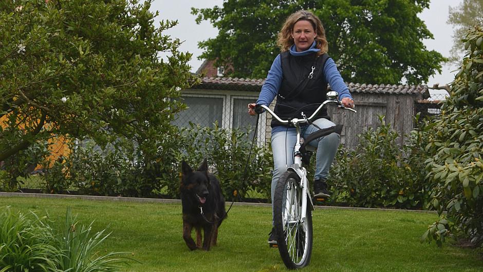 © DER LILA HUND Fee beim Fahrradtraining