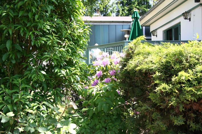 Nehmen Sie Platz, unter der Birke, auf einer der beiden Terrassen oder auch im Clubhaus an der Theke
