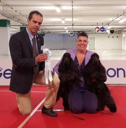 Raduno Bergamo del 25-9-2016 Miglior coppia: Shanti e Shiva Dellyllè entrambi cioccolato