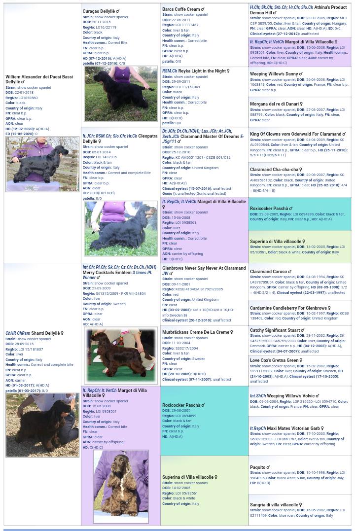 Pedigree virtuale dei cuccioli
