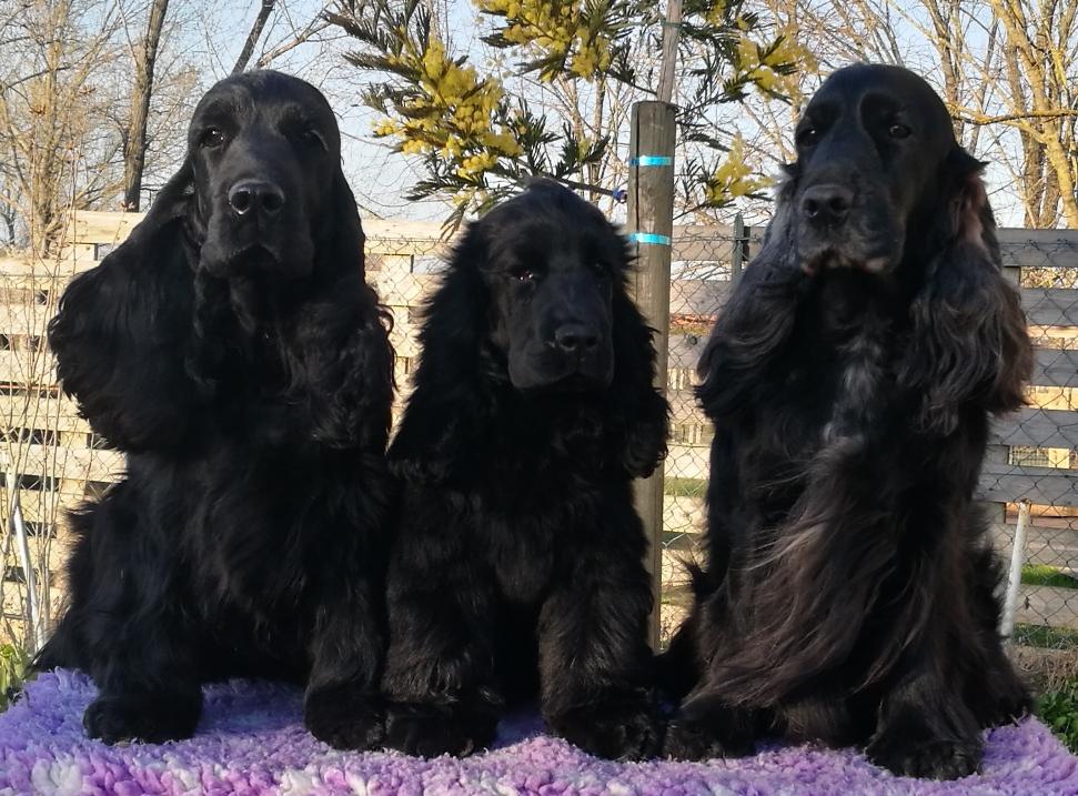 Tre generazioni di Dellyllè : a sx mamma Electra, io e a dx nonna Morgana