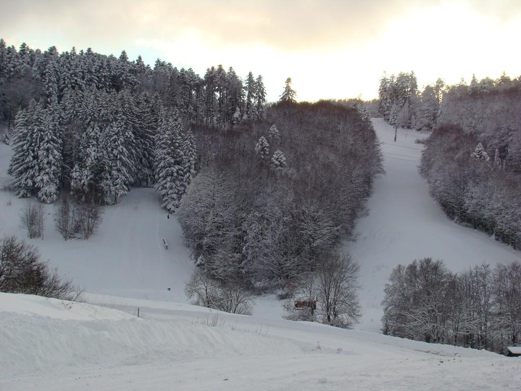 les pistes de ski alpin