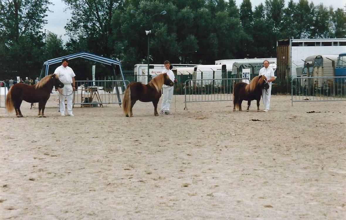 Prix de Progéniture Adonis de la Clairière avec Escudo de la Clairière et Falki de la Clairière Tours 1993