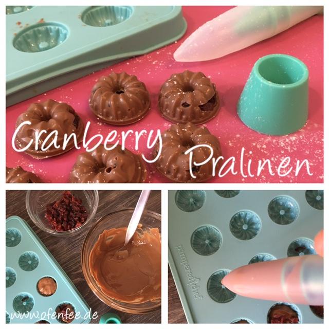 Cranberry Pralinen aus der Schokoladenform von Pampered Chef