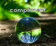 Het Complimenten Systeem