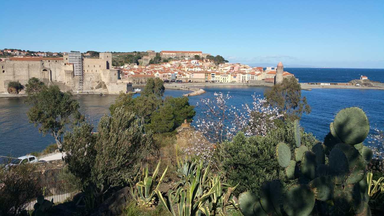 Randonnée à Collioure