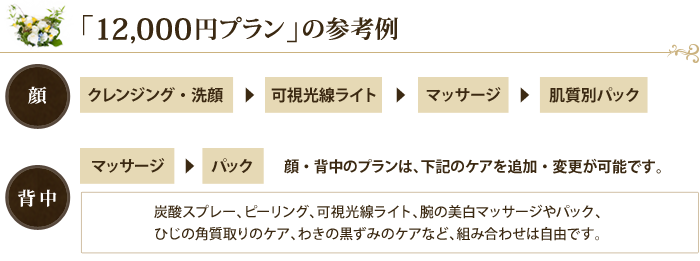 12,000円プラン