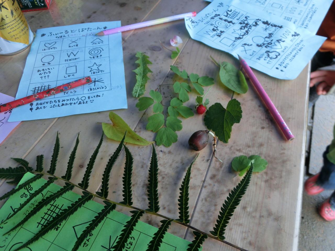 ハート型の葉っぱや変わった形の葉っぱ