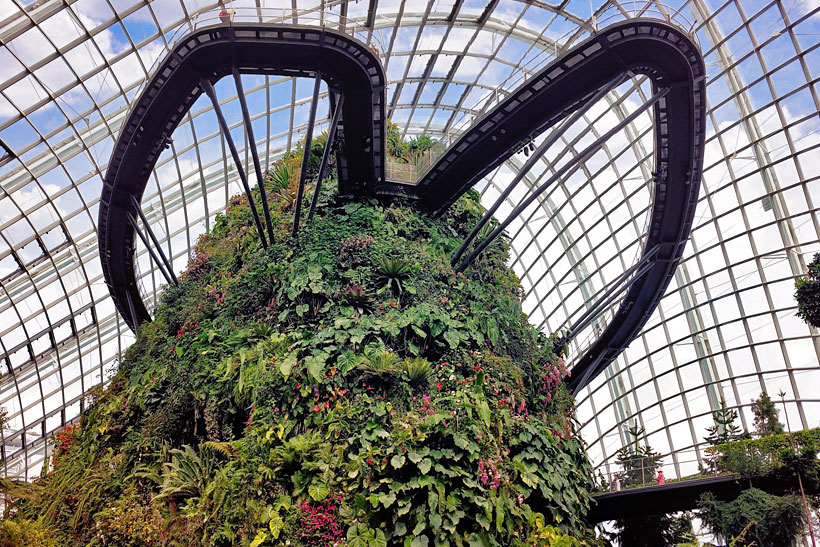 The majestic Cloud Forest | Gardens by the Bay - Best Things to do and Places to see in Singapore's Wonder Park