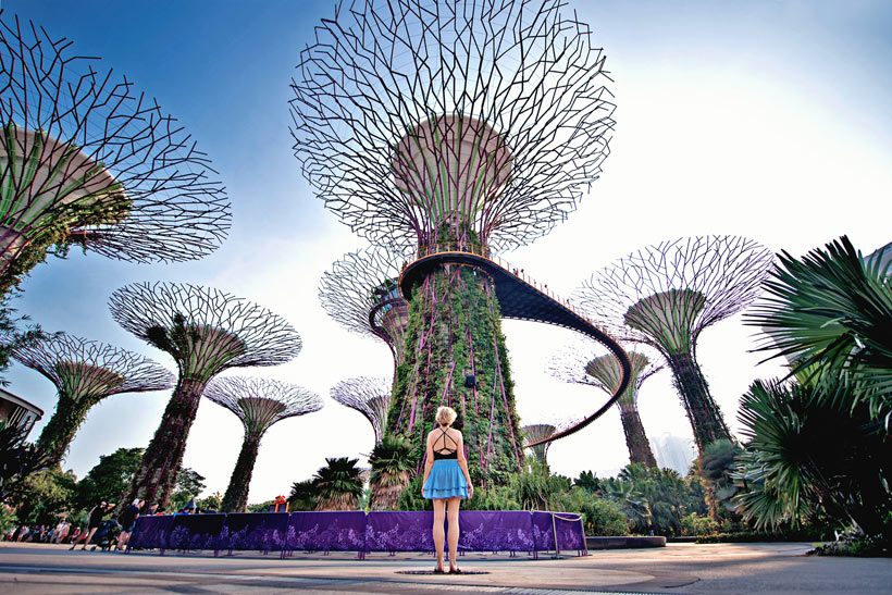 Supertree Grove at Gardens by the Bay | Best Places to Visit in Singapore in 3 Days | Things to do in Singapore | #singapore #supertrees #SG #travel
