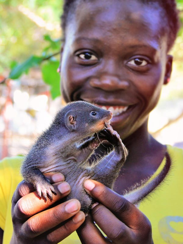 Katherine with a mongoose baby | Volunteering with Wildlife and Children in South Africa - My Enriching Experience | via @Just1WayTicket