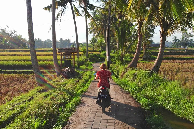 Ubud by Scooter | 10 Awesome Things to do in Ubud, Bali | Travel Guide to Ubud
