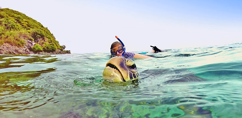 This is me. And a turtle, gasping for air. Photo taken in Apo Island, Philippines @Just1WayTicket