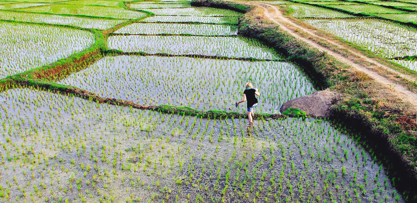 ...getting lost in a rice field in Hampi (Karnataka), India 2012 @Just1WayTicket