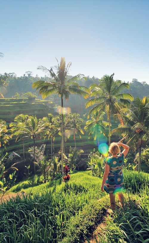 The popular Tegalalang Rice Terraces near Ubud | One of 10 Top Things To Do In Bali Indonesia | via @Just1WayTicket