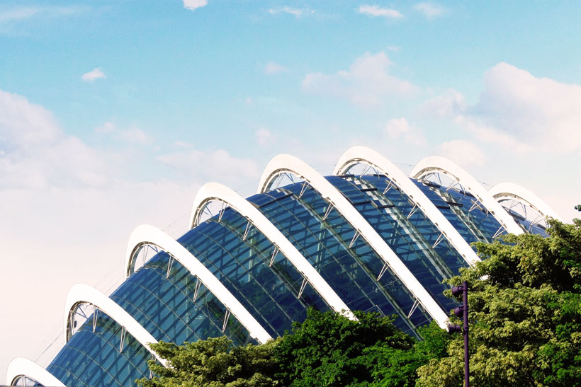Flower Dome | Gardens by the Bay - Best Things to do and Places to see in Singapore's Wonder Park