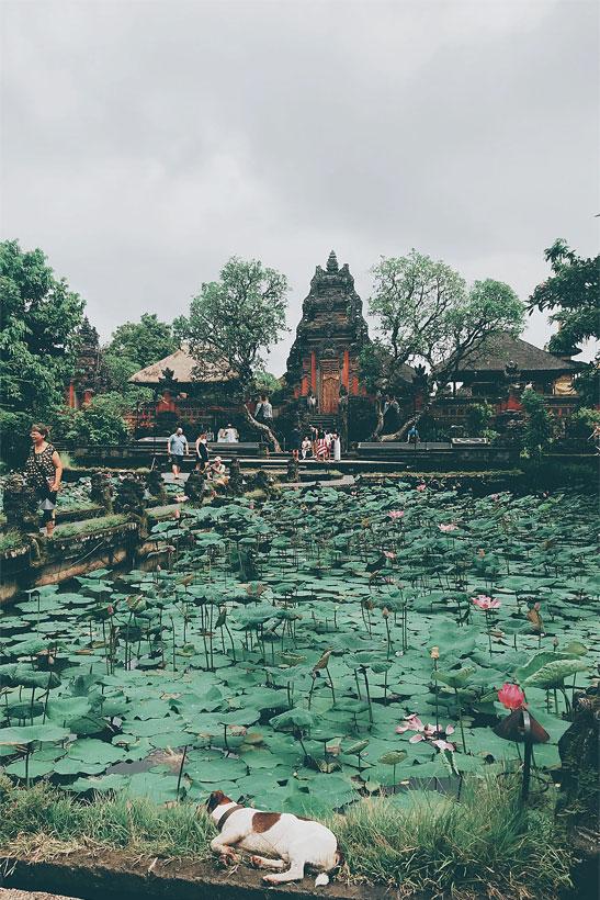 Ubud Royal Palace | 10 Awesome Things to do in Ubud, Bali | Travel Guide to Ubud