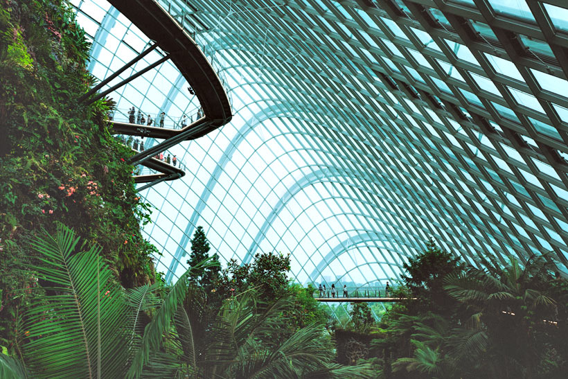 Flower Dome at Gardens by the Bay | Best Places to Visit in Singapore in 3 Days | Things to do in Singapore | #singapore #SG #travel #flowerdome #gardensbythebay