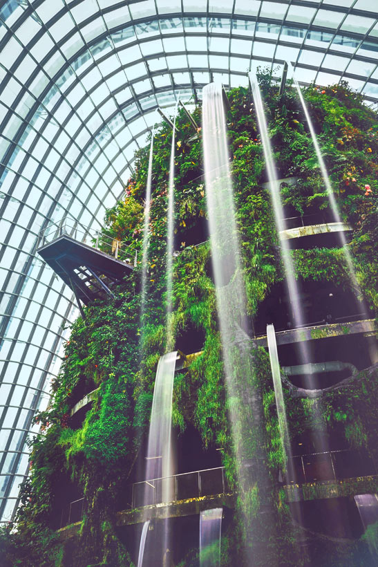 Cloud Forest at Gardens by the Bay | Best Places to Visit in Singapore in 3 Days | Things to do in Singapore | #singapore #SG #travel #cloudforest #gardensbythebay