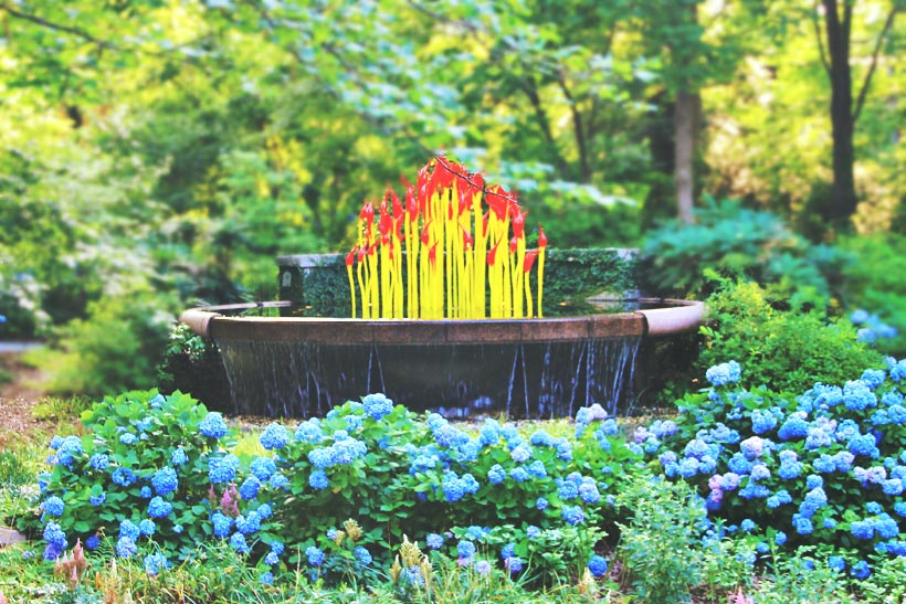 Botanical Garden | 8 Fun Things to do in Atlanta | Travel City Guide | via @Just1WayTicket