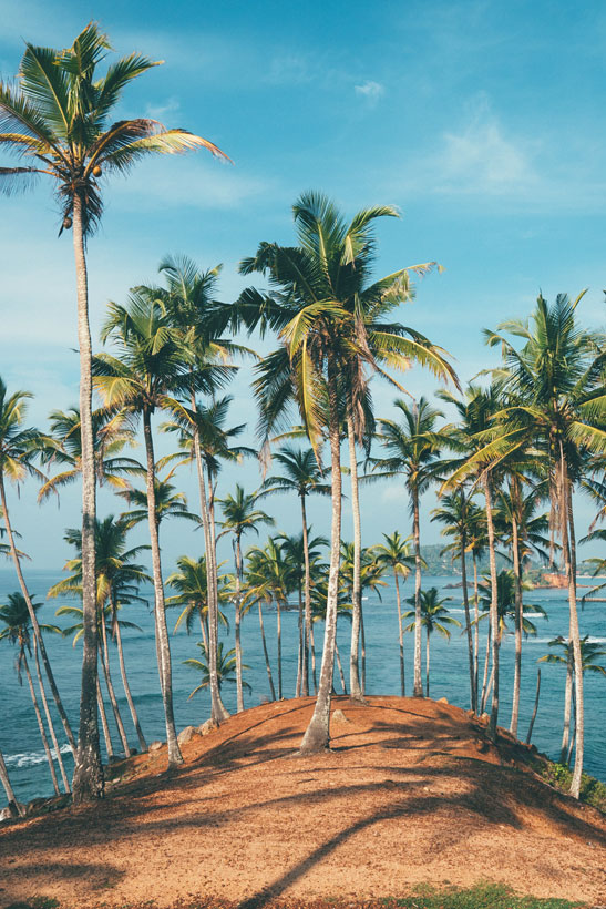 Travel Sri Lanka: 30 Photos That Will Make You Pack Your Bags And Go | Beaches