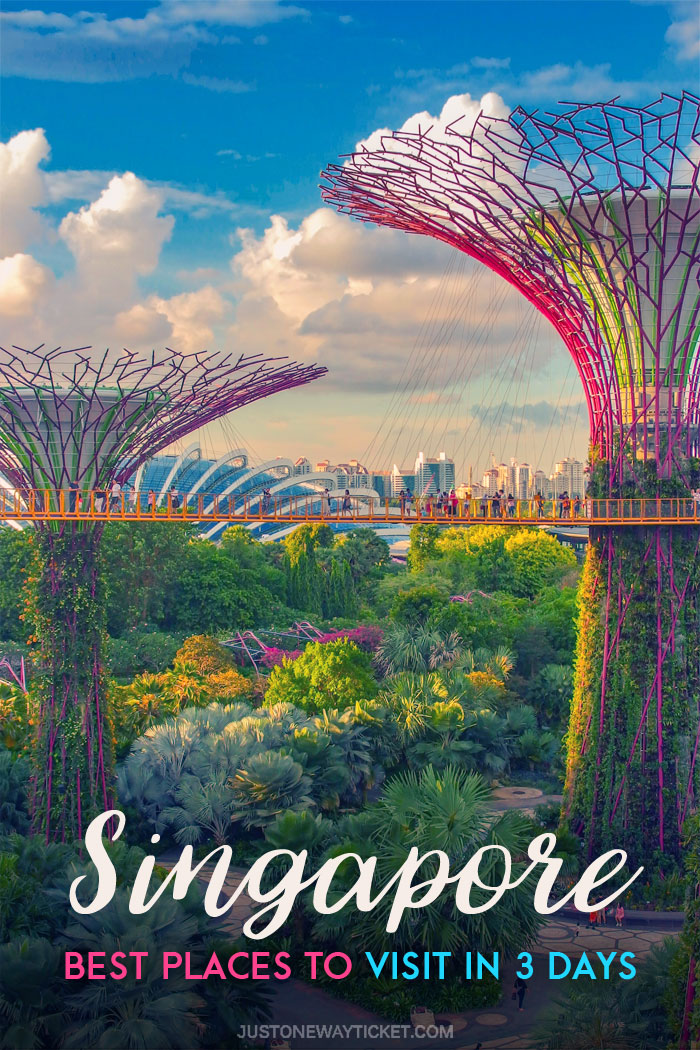 Best Places to Visit in Singapore in 3 Days | Things to do in Singapore | #singapore #supertrees #SG #travel
