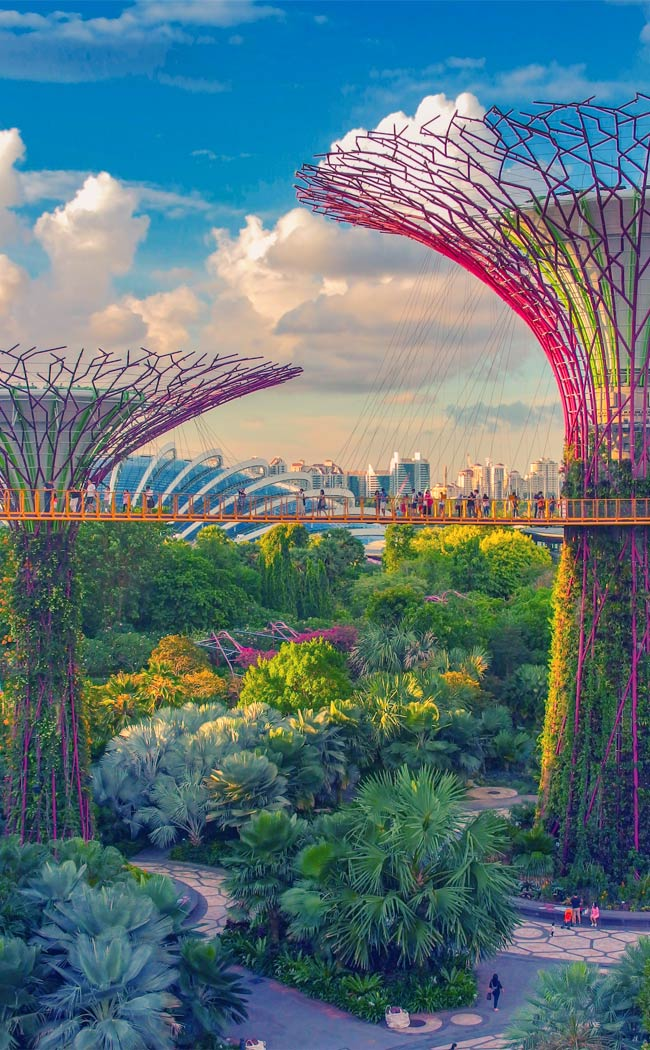Best Places to Visit in Singapore in 3 Days | Things to do in Singapore | #singapore #SG #travel #supertrees