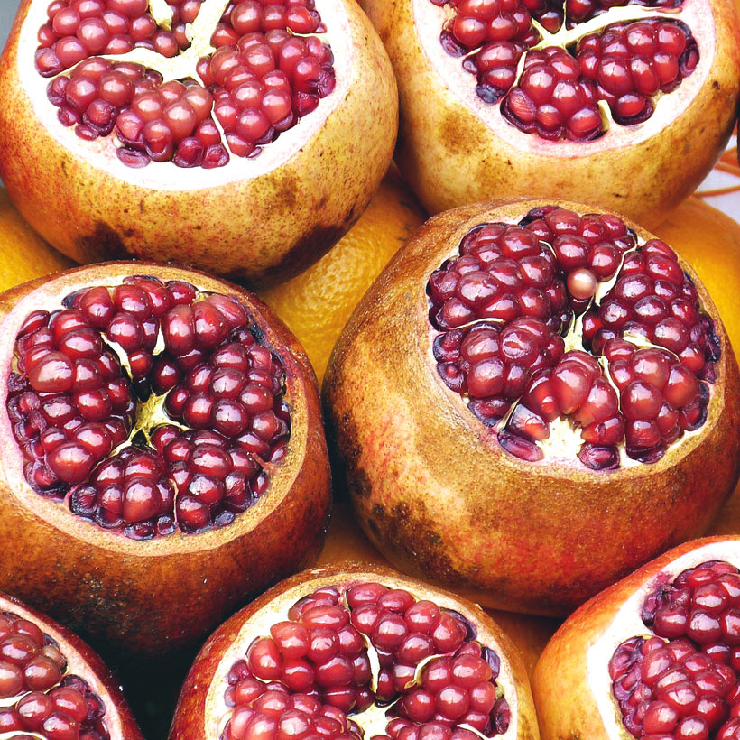 Pomegranates | 20 Photos That Will Make You Want To Visit Turkey! | via @Just1WayTicket