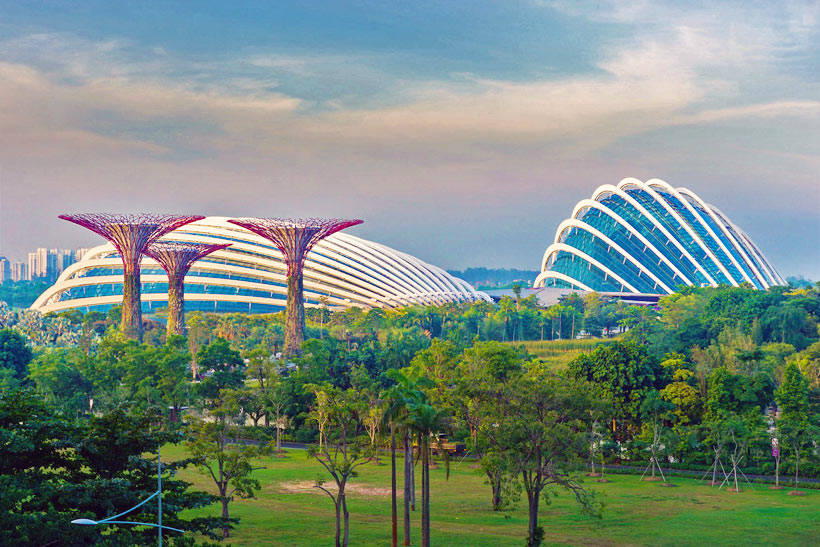 Gardens by the Bay | Best Places to Visit in Singapore in 3 Days | Things to do in Singapore | #singapore #SG #travel #supertrees #gardensbythebay #supertreegrove
