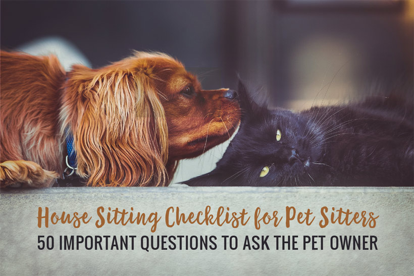 House Sitting Checklist for Pet Sitters  – 50 Important Questions to Ask the Pet Owner