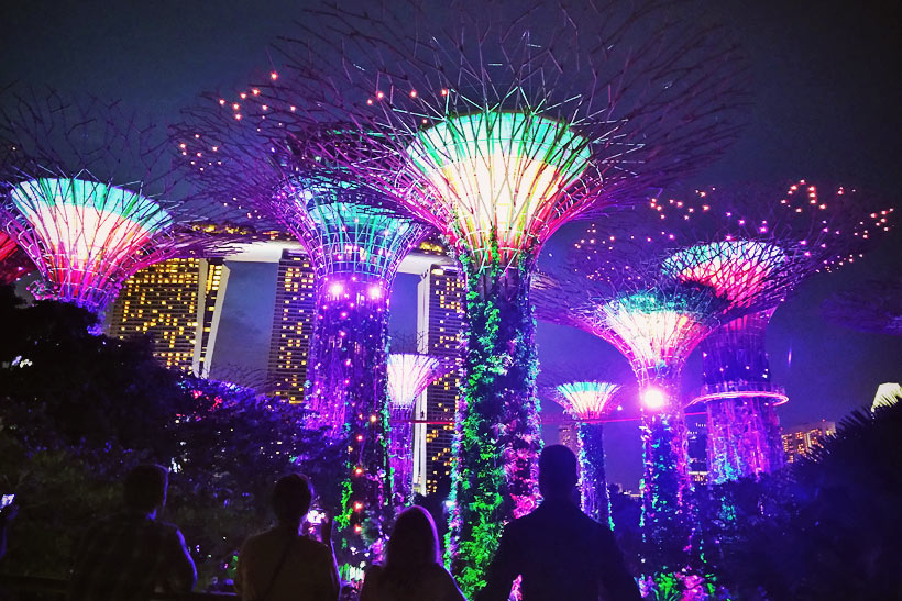 Supertree Grove at Gardens by the Bay | Best Places to Visit in Singapore in 3 Days | Things to do in Singapore | #singapore #SG #travel #supertrees #gardensbythebay #supertreegrove