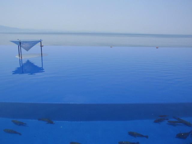水槽と海が一体になって見えます。