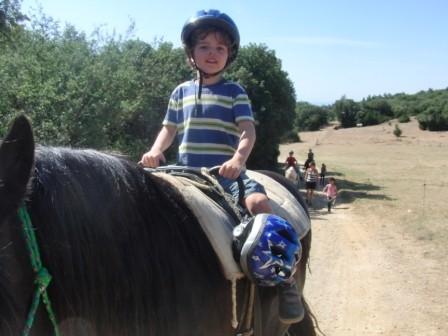 Auf zur Pferdewanderung!
