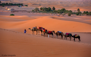 Marokko Fotografie Renate Jebe