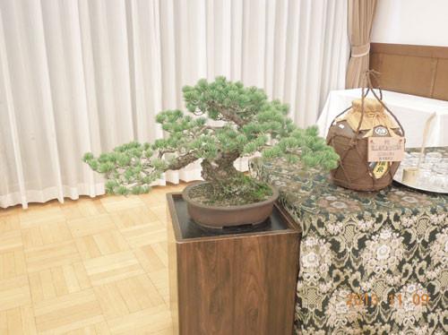 等クラブは五葉松の盆栽を贈呈しました