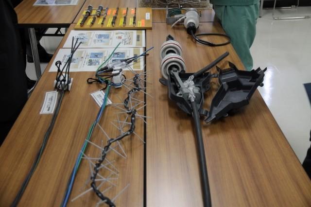 碍子や配電線の見本