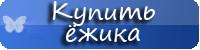 купить-карликового-африканского-или-ушастого-ёжика-из-питомника-фантазия-ивушка-атлантик-киперс