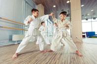 Kampfsport Selbstverteidigung Kinder Hemmingen 7