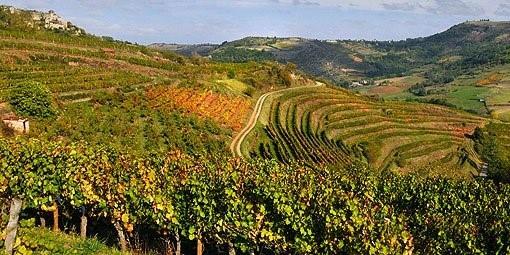 Vignes de Marcillac Vallon