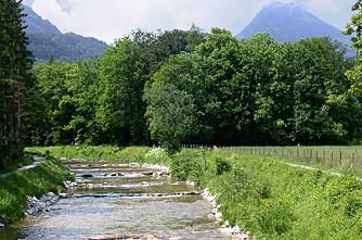 Der Auerbach am Bauernhof Pechlerhof
