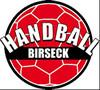 aktuelles Handball Birseck