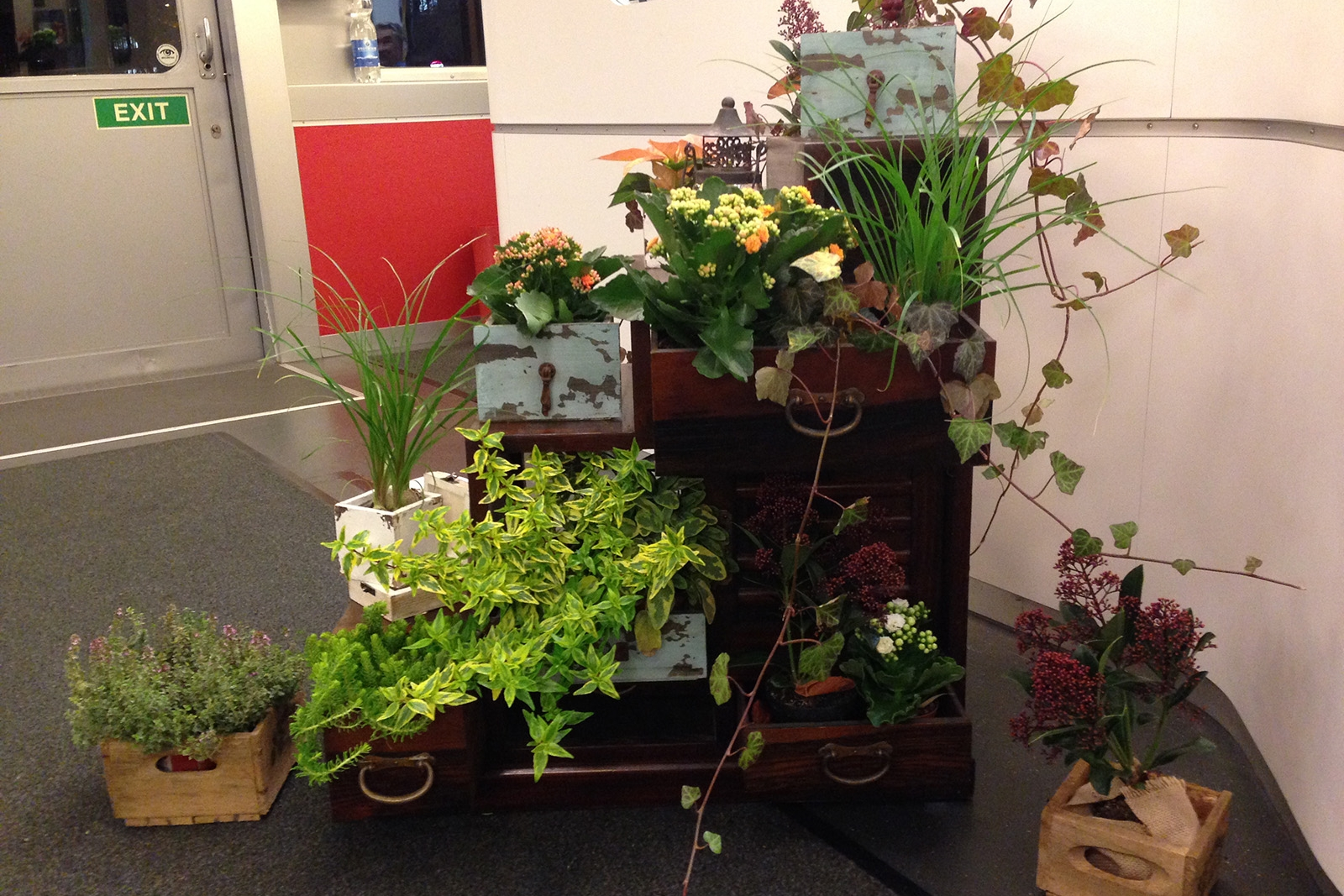 Blumen- und Pflanzenarrangement