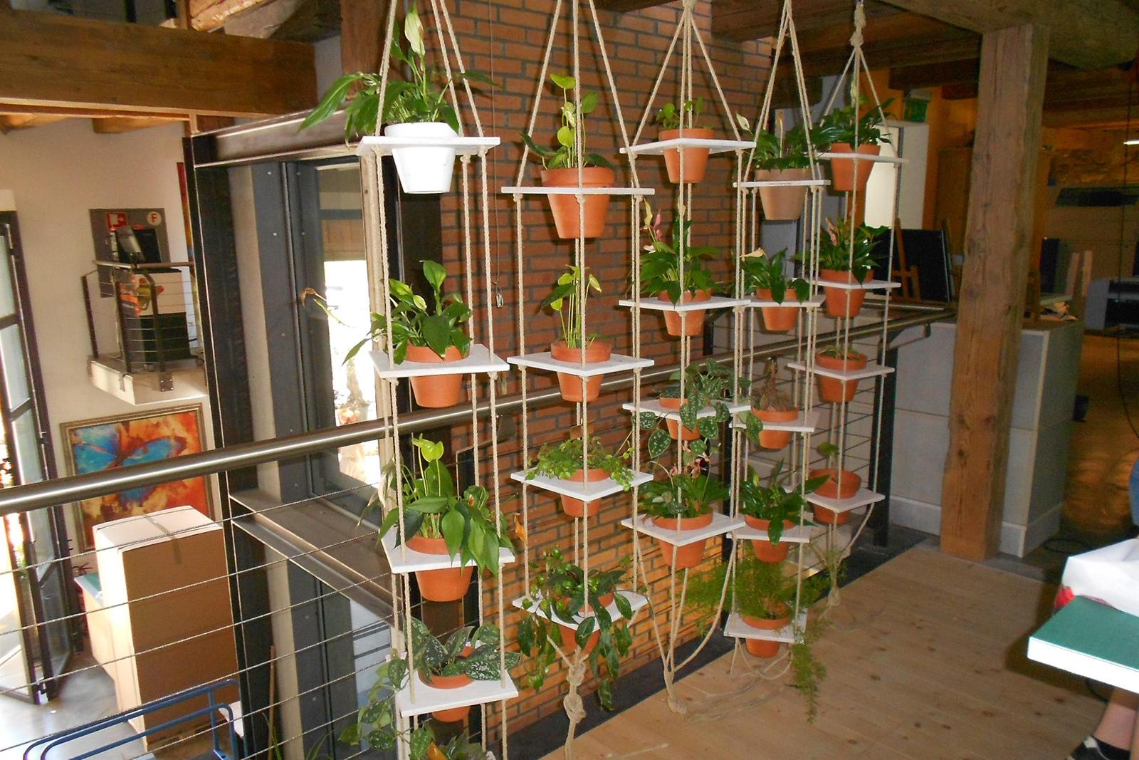 Aufhänger mit diversen Pflanzen und Kräutern, Grösse variabel