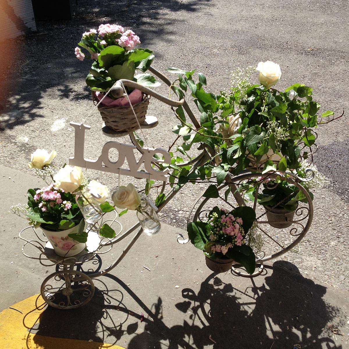 Blumenvelo 094425